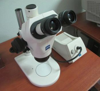 Στερεοσκοπικό μικροσκόπιο