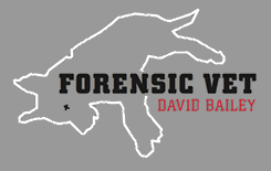 Forensic Vet – David Bailey